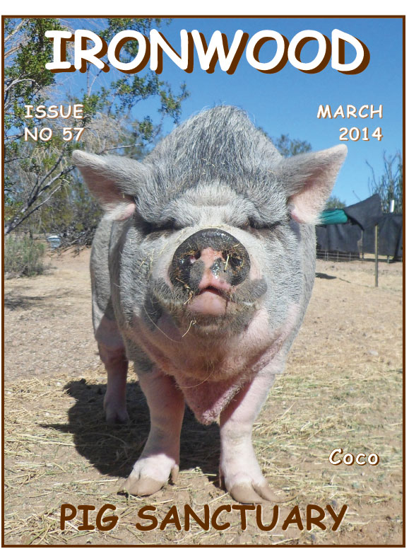 March 2014 Newsletter icon